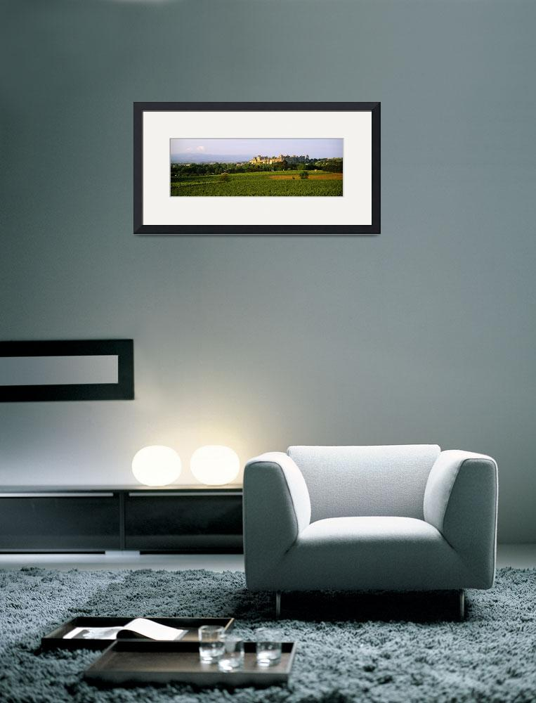 """Vineyards in front of a castle&quot  by Panoramic_Images"