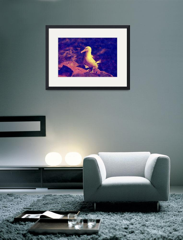 """""""Cross Looking Albatross Stand At Top Of Sea Cliff&quot  by MarilynsArt"""