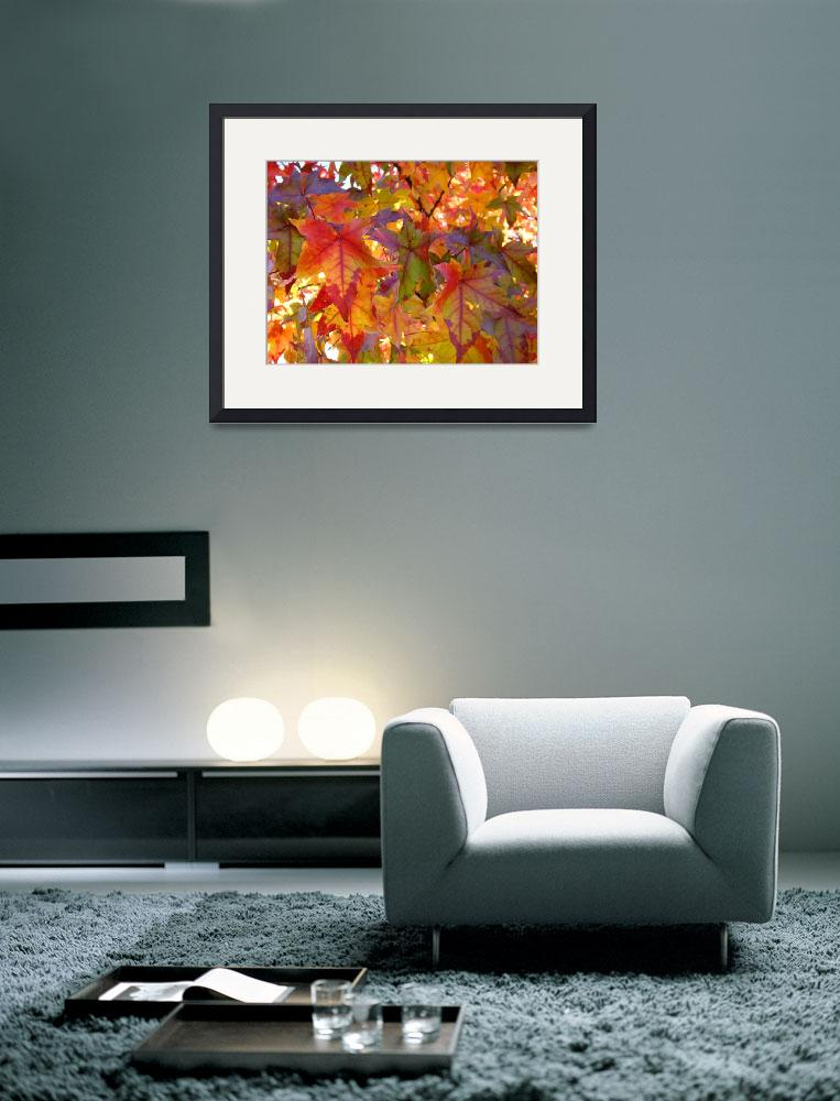 """""""Red Orange Autumn Leaves Fall art prints Trees&quot  (2013) by BasleeTroutman"""