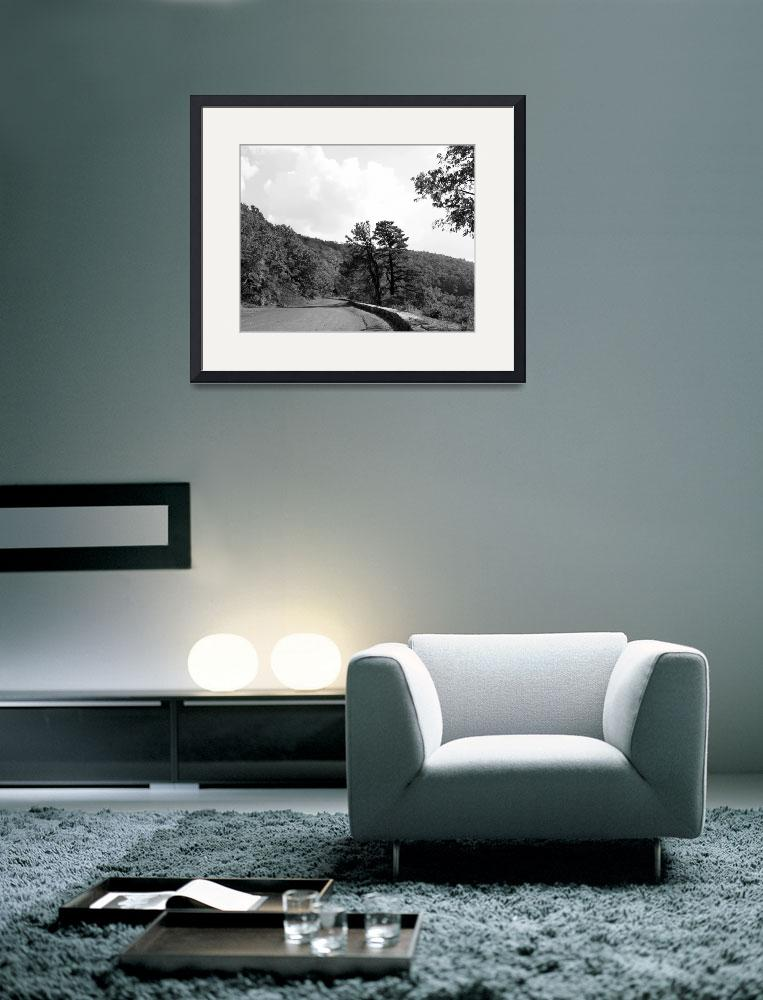 """""""Skyline Drive Road Scene Black and White 8X10&quot  (2008) by brianyoung81"""