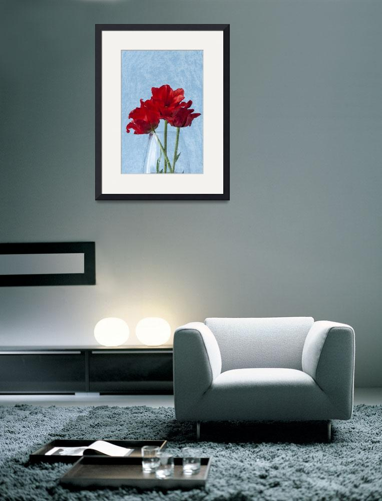 """""""Red Tulip&quot  by StevePurnell"""