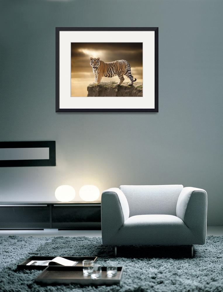 """""""Tiger&quot  (2013) by johnlund"""