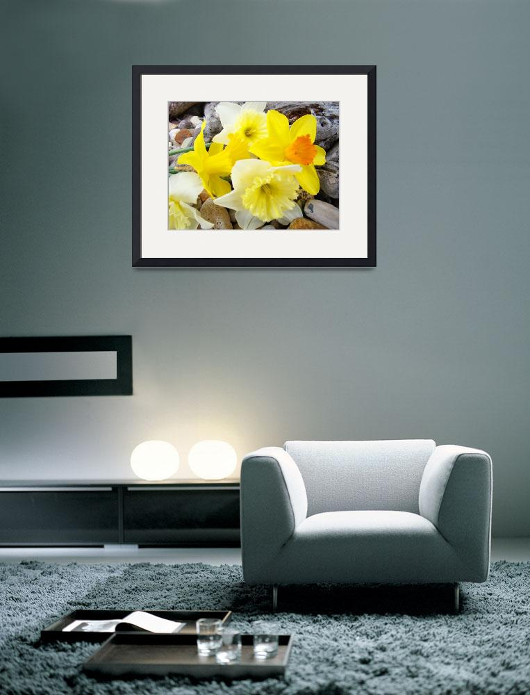 """Daffodils 25 Daffodil Flowers Bouquet Spring Art&quot  (2009) by BasleeTroutman"