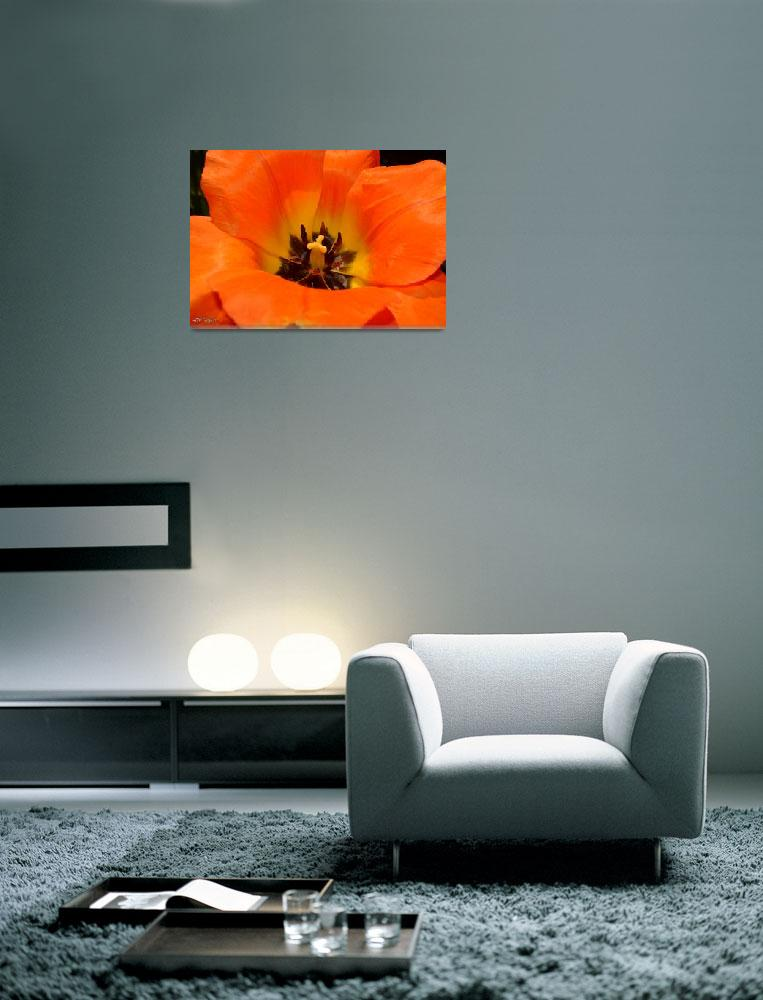 """""""The Color Orange""""  (2014) by TaylorMadeArtUS"""