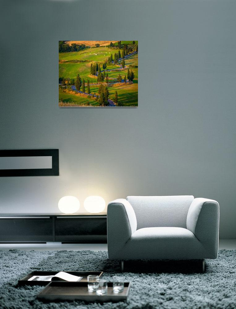 """Toscana Strada&quot  (2010) by Inge-Johnsson"