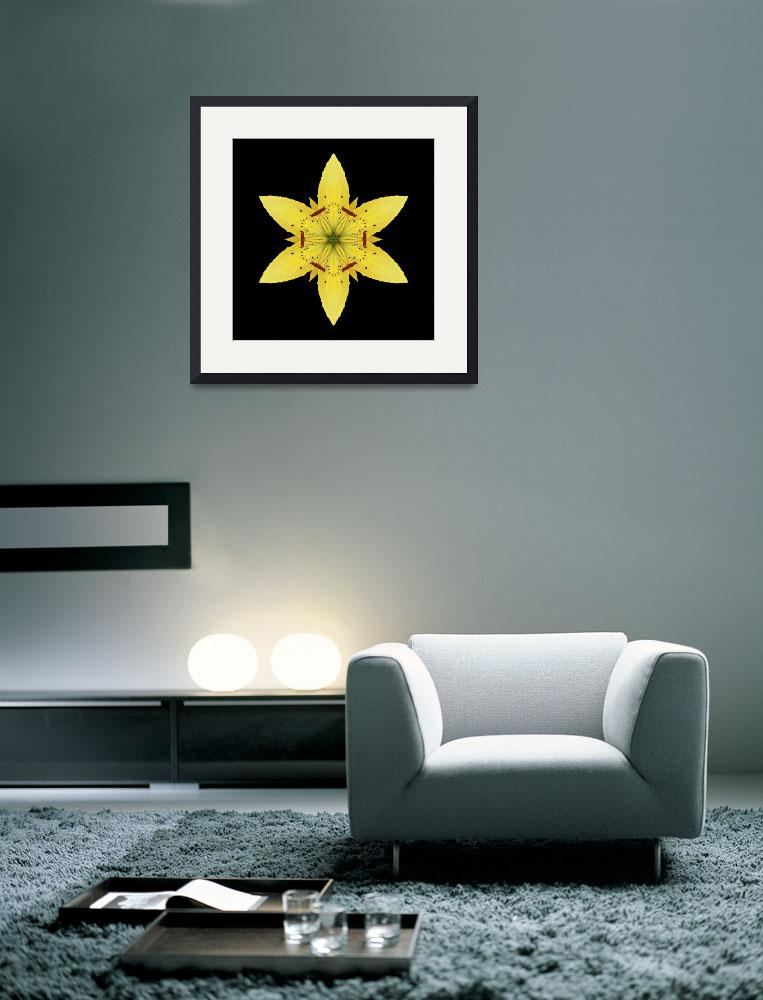 """""""Yellow Lily I&quot  by phototransformations"""