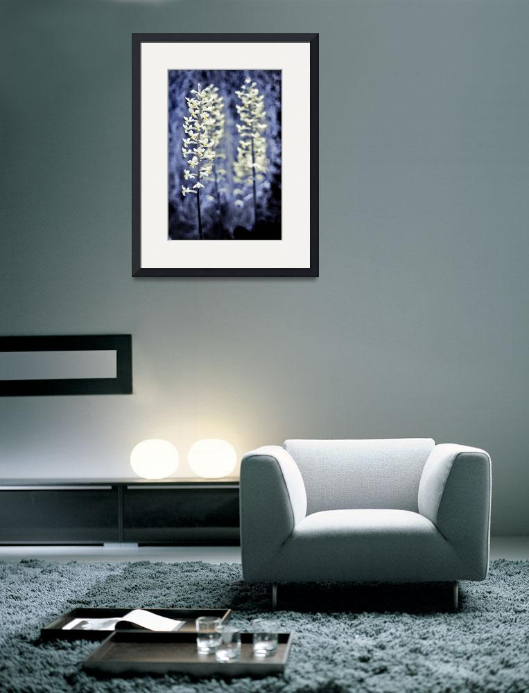 """""""3 flowers""""  (2008) by e-gallery"""