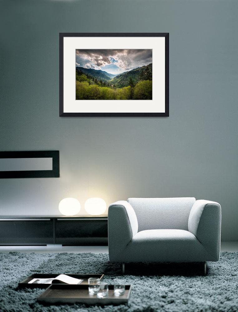 """""""Great Smoky Mountains Landscape Photography - Spri&quot  (2012) by DAPhoto"""