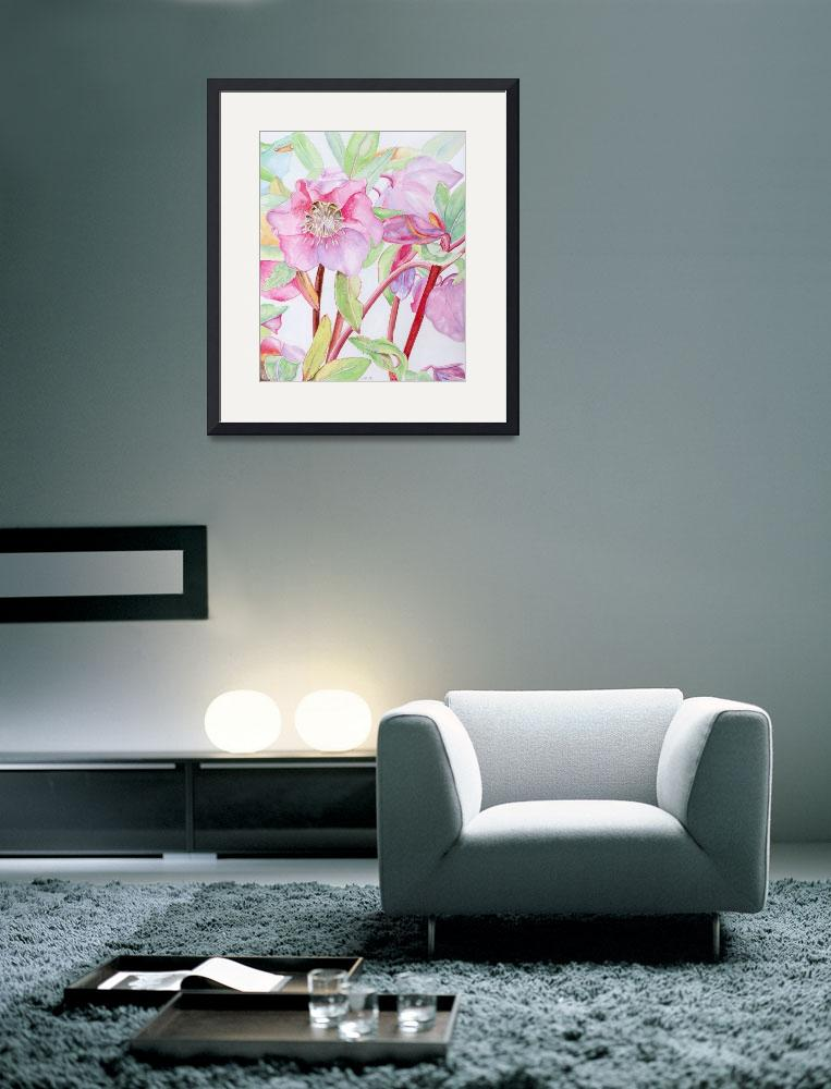 """""""pink hellebore&quot  (2008) by factorygallery"""