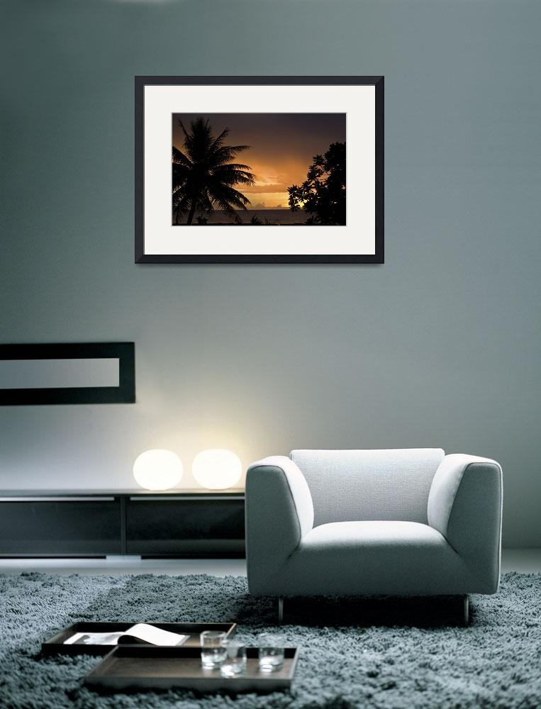 """""""Sunset and Palm Trees&quot  (2008) by Mac"""