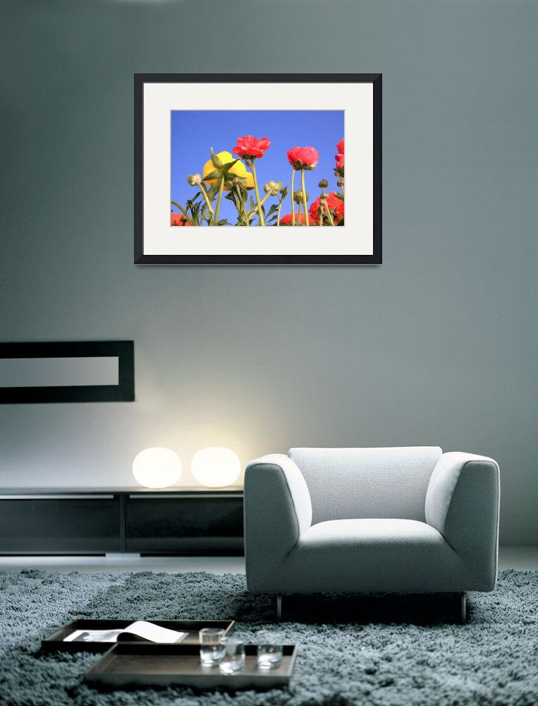 """""""Spring flowers against clear blue sky.&quot  (2008) by Piotr_Marcinski"""
