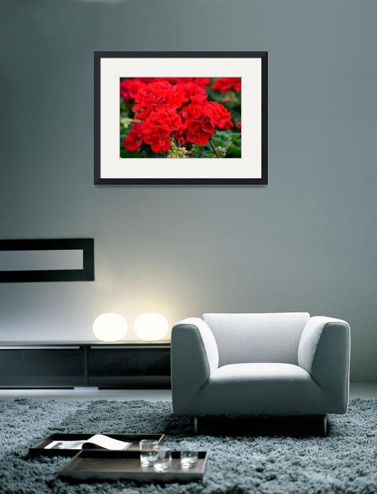 """Expressive Floral Red Geraniums E131716&quot  (2016) by MasArtStudio"
