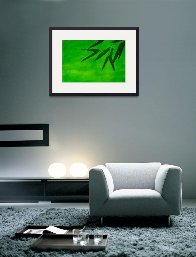 """""""bamboo impression#2&quot  (2012) by hannes61"""