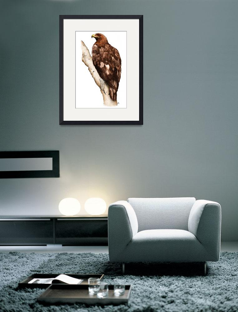 """""""Golden Eagle&quot  by inkart"""