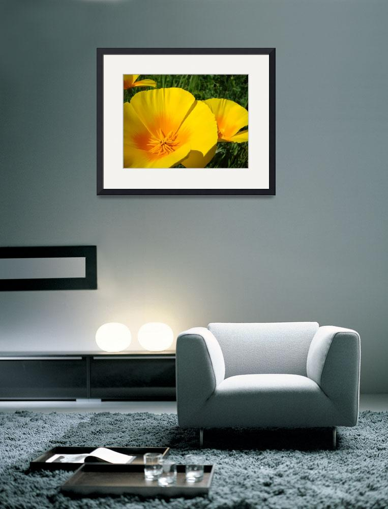 """Christmas Gift Gallery POPPIES Floral Art Gifts&quot  (2009) by BasleeTroutman"