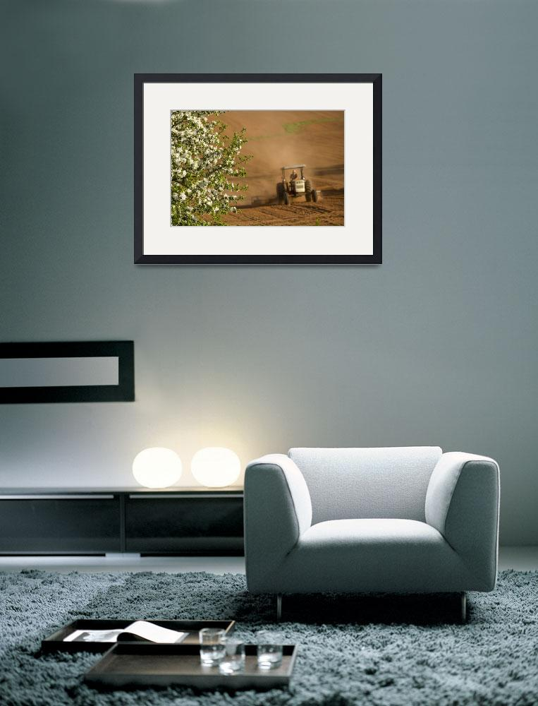 """""""Apple Blossoms And Farmer On Tractor, Prince Edwar&quot  by DesignPics"""