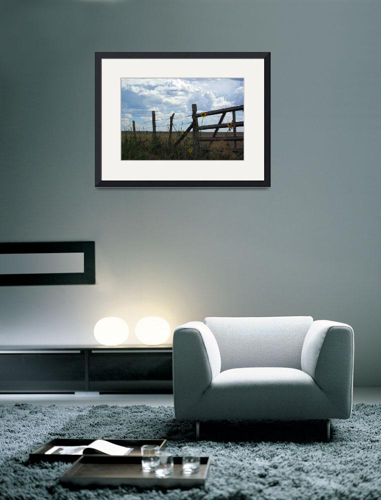 """""""Fence Sky and Sunflowers&quot  (2007) by lightcaptured"""