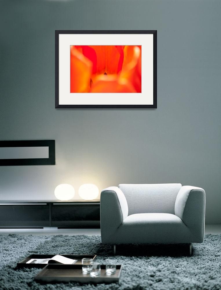"""""""warm-mood&quot  (2012) by brunopaolobenedetti"""