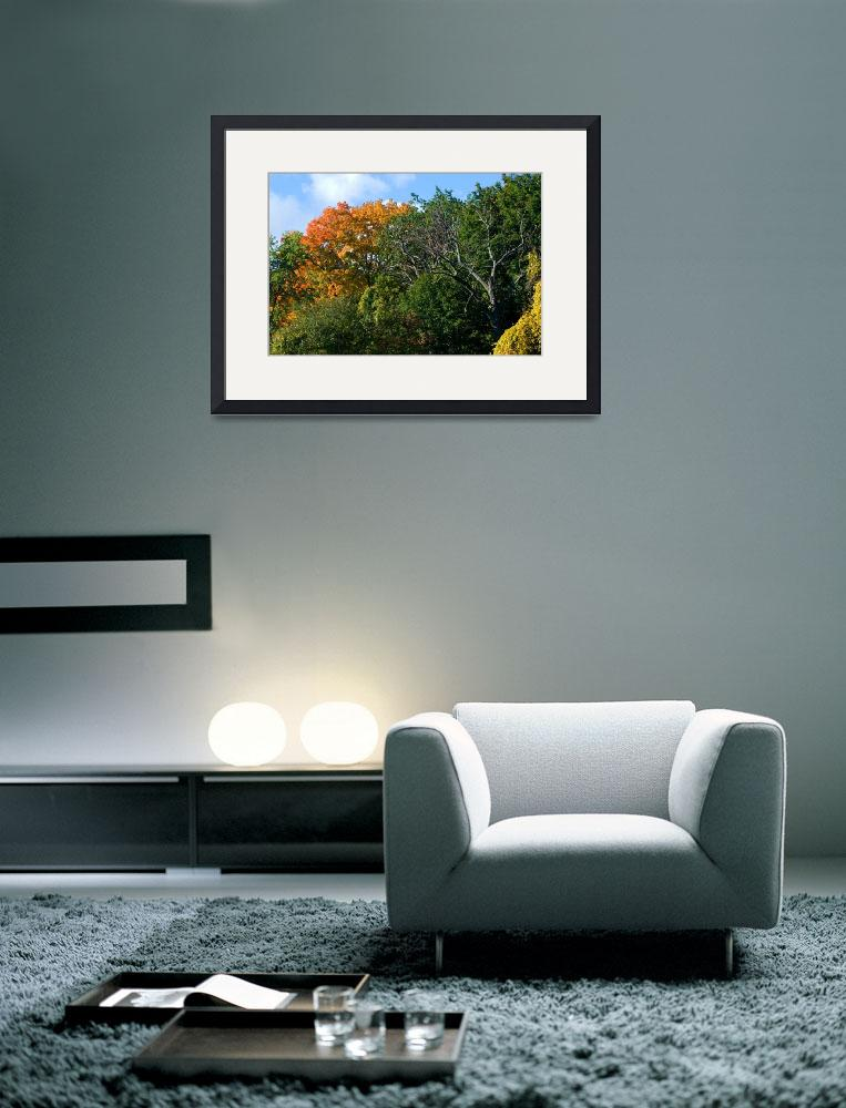 """""""Early Fall Colors&quot  (2008) by dennisflood"""