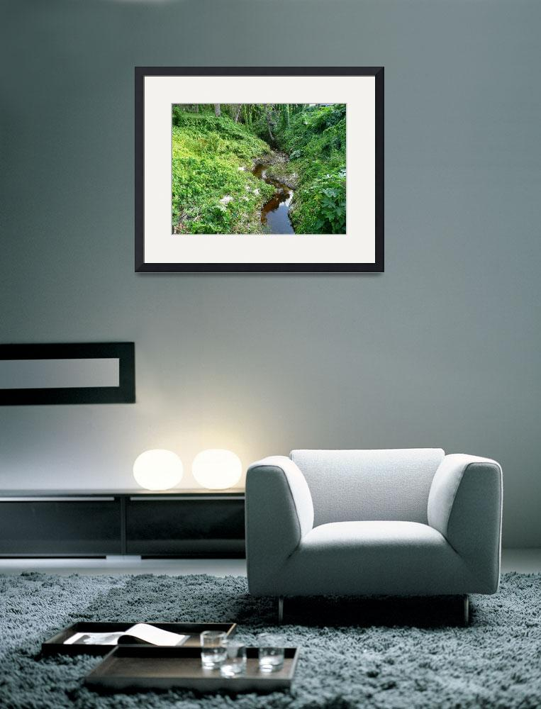 """""""Tranquil Stream in a Green Ravine&quot  by WTrimblesArt"""