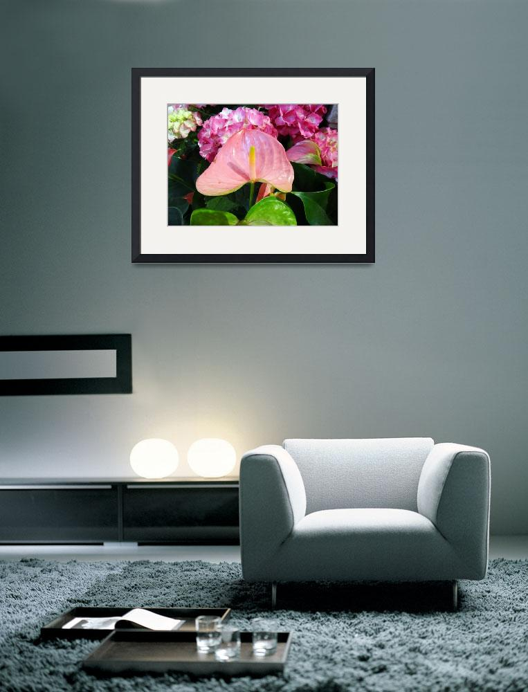 """""""Pink Anthurium&quot  (2014) by heeltote"""