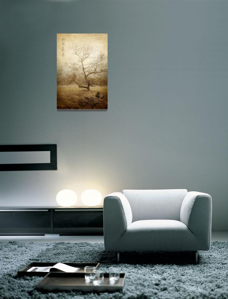 """""""Winter Tree in the Fog""""  (2013) by EdmundLowe"""