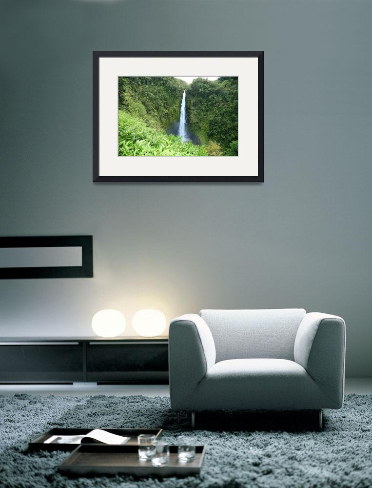 """Hawaii, Big Island, Akaka Falls State Park, View O&quot  by DesignPics"