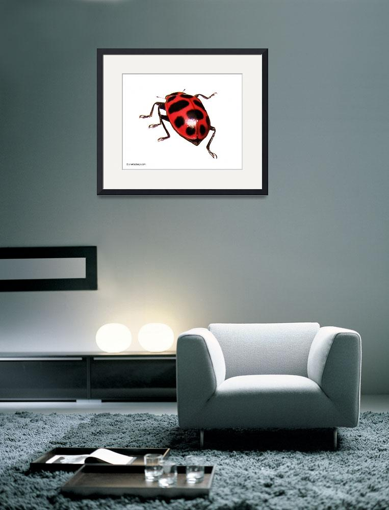 """""""BUG OFF&quot  (2007) by janettedengo"""