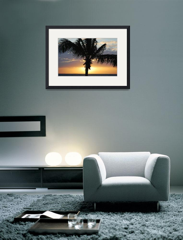 """""""Tropical Silhouette&quot  (2008) by goode"""
