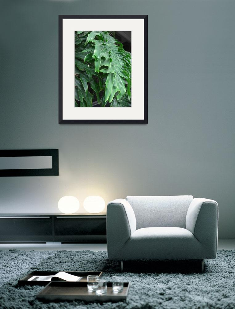 """""""Philodendron Leaves Side View&quot  by ChristopherInMexico"""