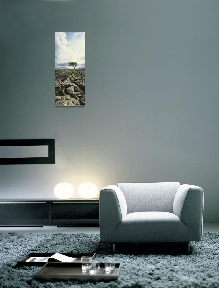 """The Burren, On Kinvara Side, County Clare, Ireland""  by DesignPics"