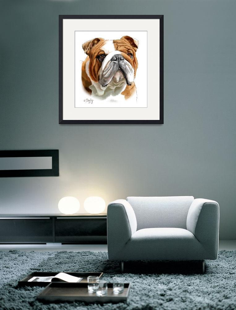 """Brown and White Bulldog&quot  by Tim"