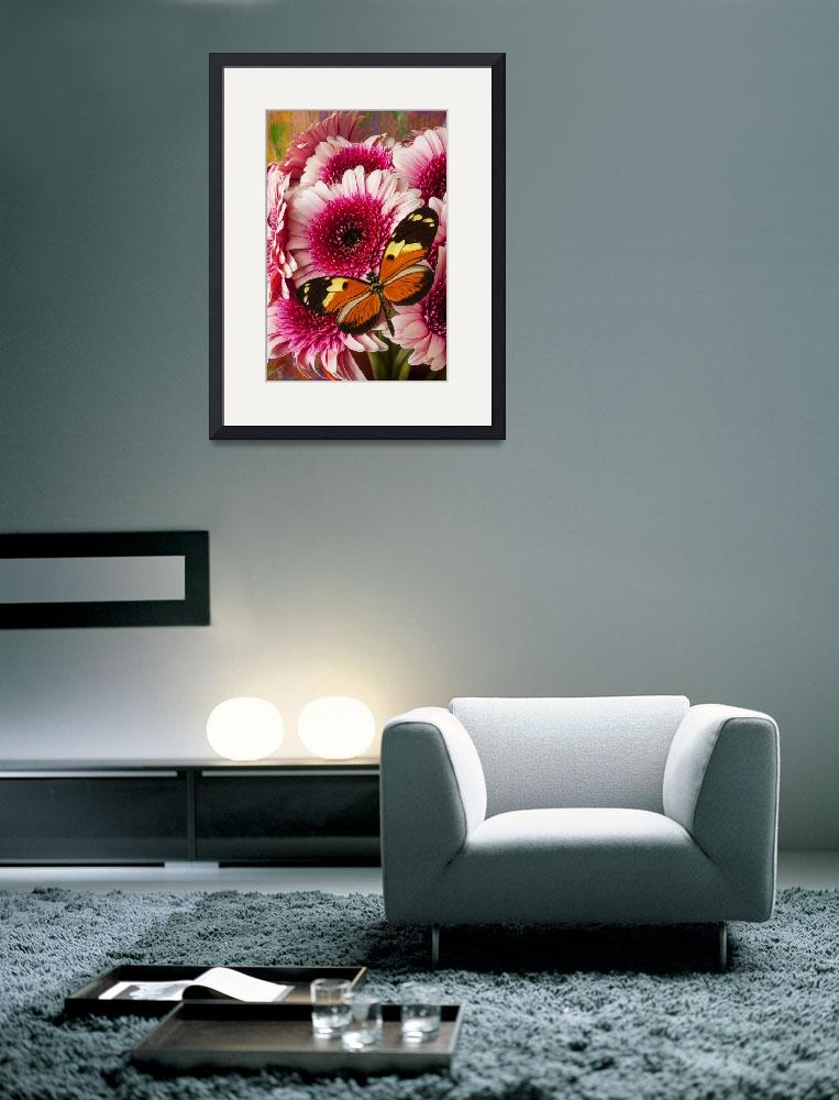 """""""Butterfly on pink mum&quot  (2012) by photogarry"""