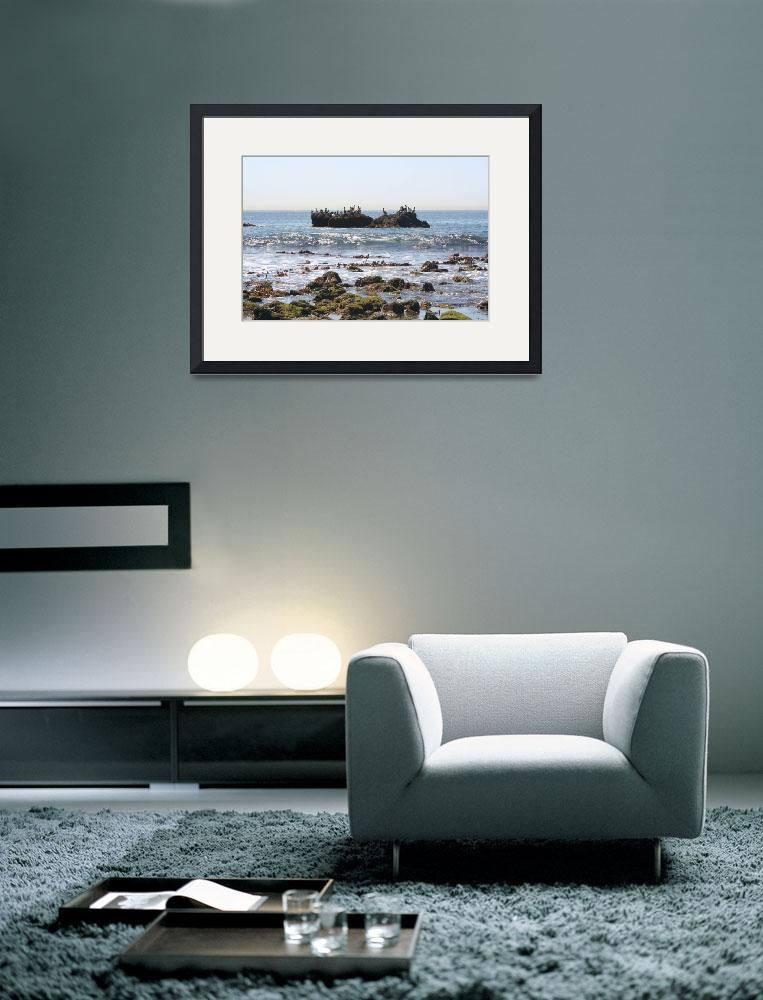 """""""Ocean View&quot  (2008) by photosbydenise"""
