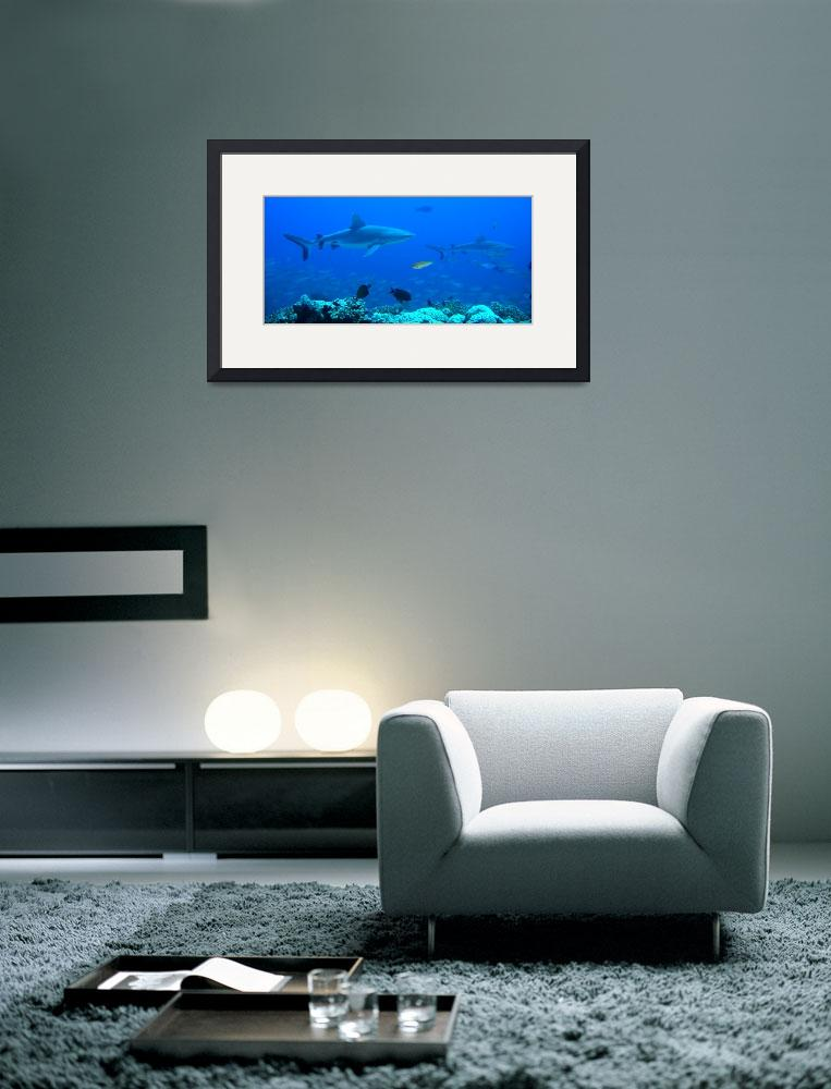 """""""Hunters Reef&quot  by Mac"""
