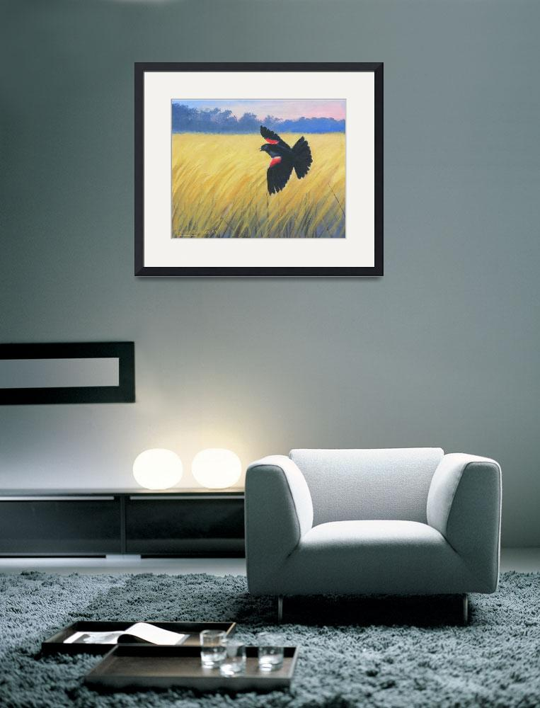 """Red Winged Blackbird&quot  (2010) by claudebuckleyfineart"
