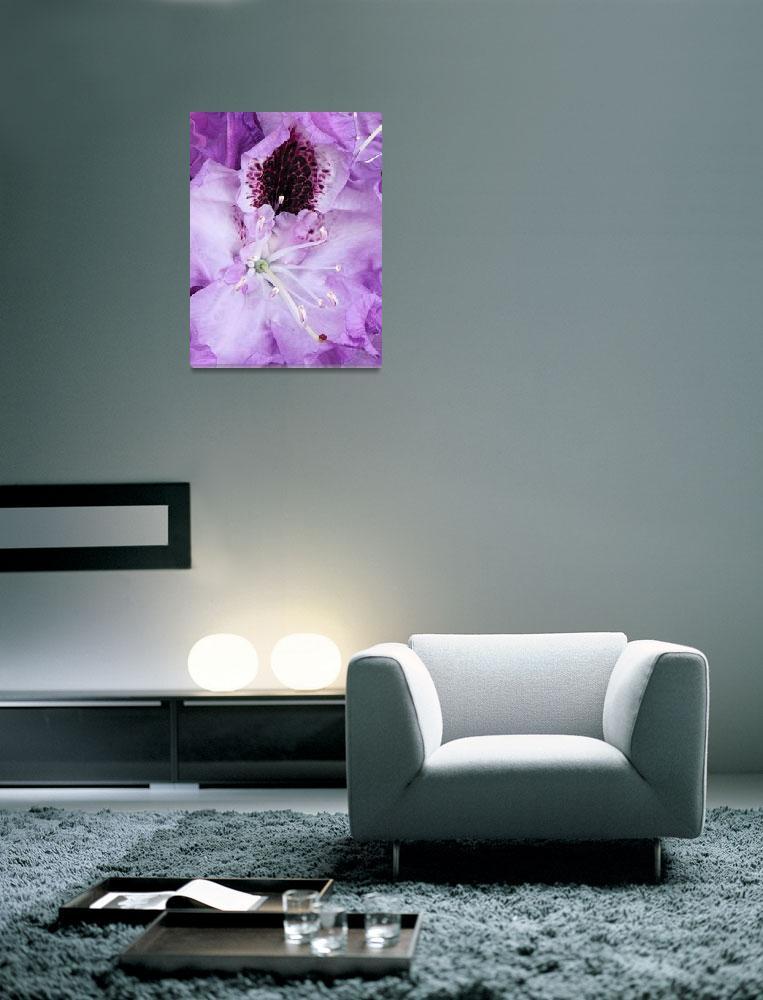 """""""Purple Blooms""""  by KSDesigns"""