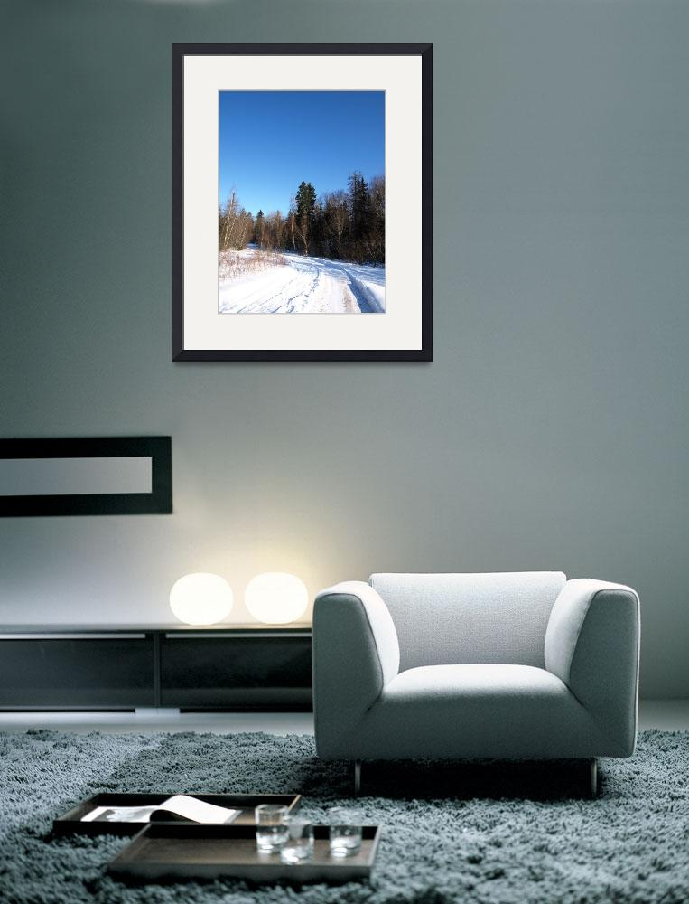 """""""Winter 5""""  (2009) by Albertphoto"""
