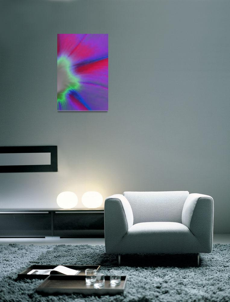 """""""Morning Glory Abstract No2""""  (2009) by evansonart"""
