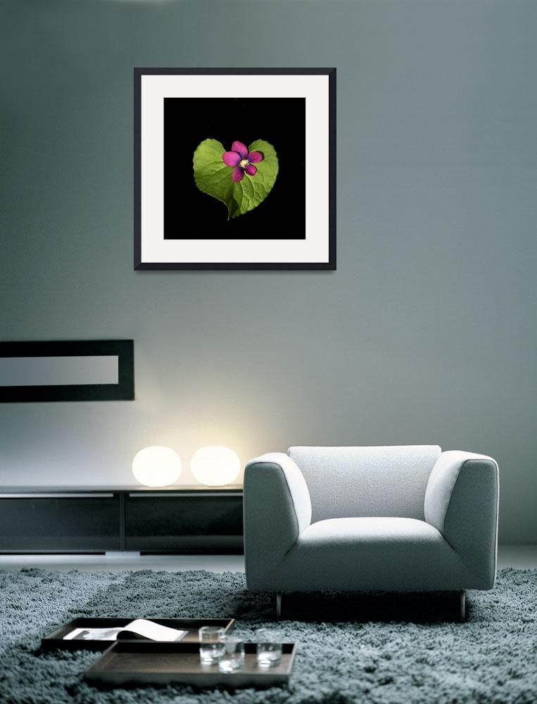 """""""Violet Love&quot  (2011) by ecoday"""
