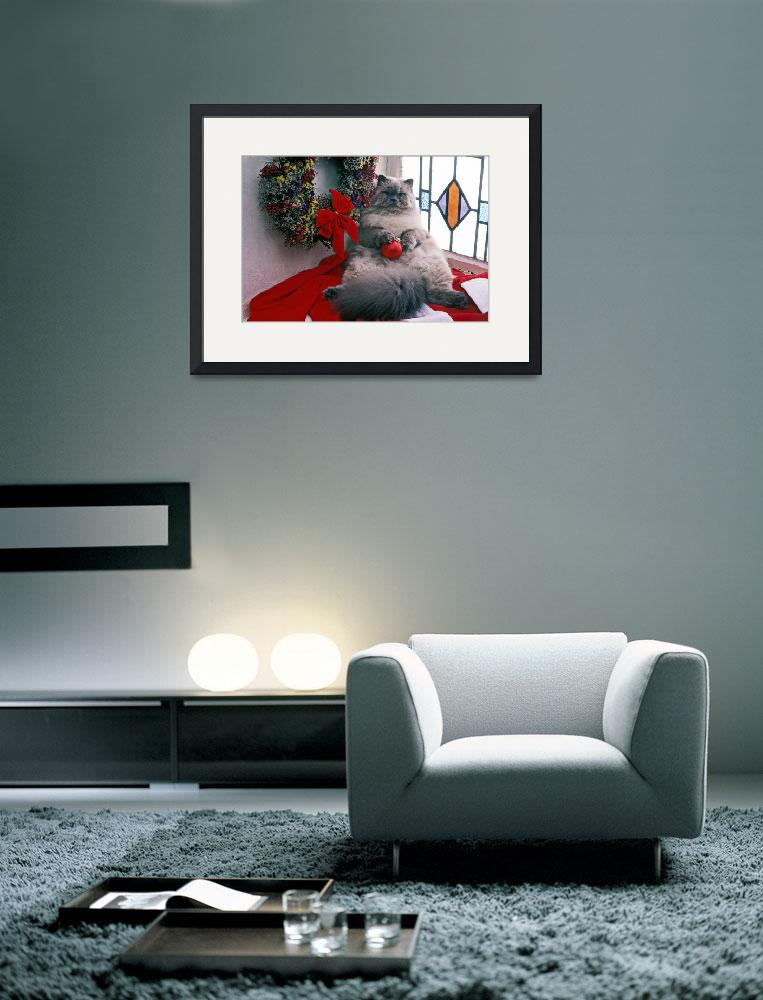 """Persian cat with Christmas ball""  (2012) by photogarry"