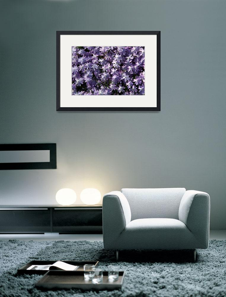 """""""Pale Violet Iridescence&quot  (2008) by LyndaLehmann"""