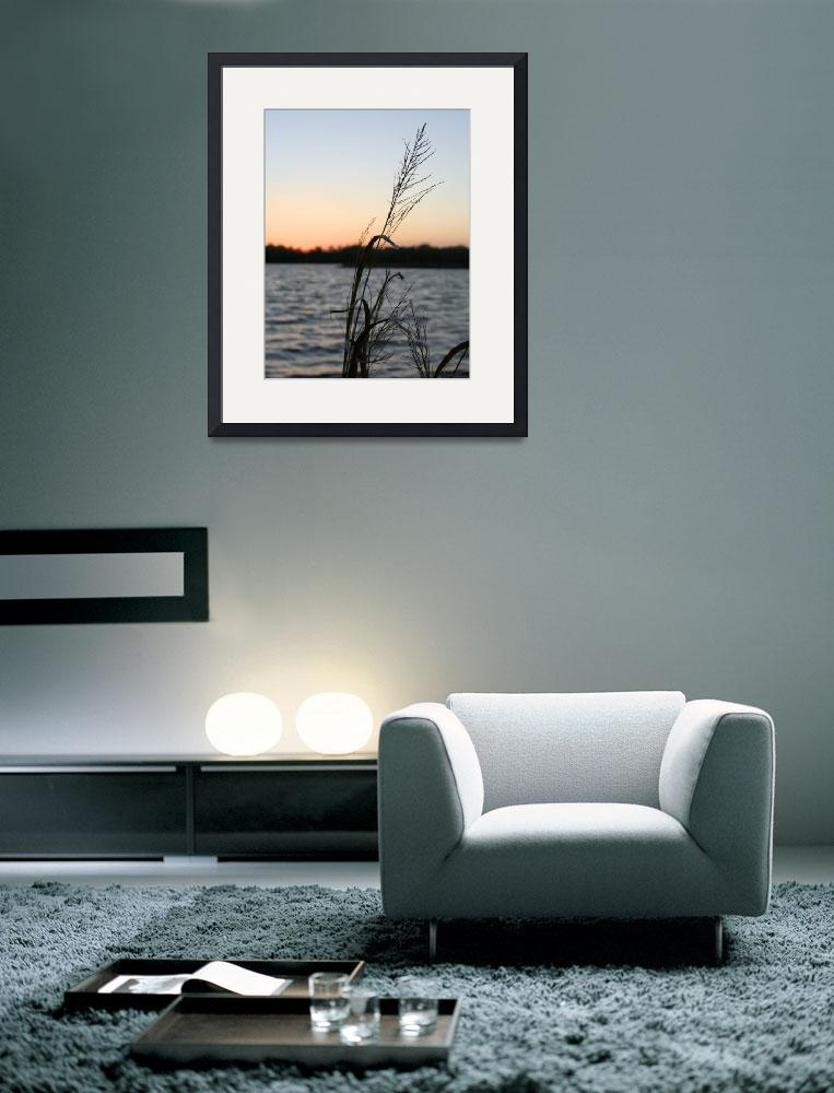 """""""Sunset grass at Little Dixie Lake&quot  by ArtSmith"""