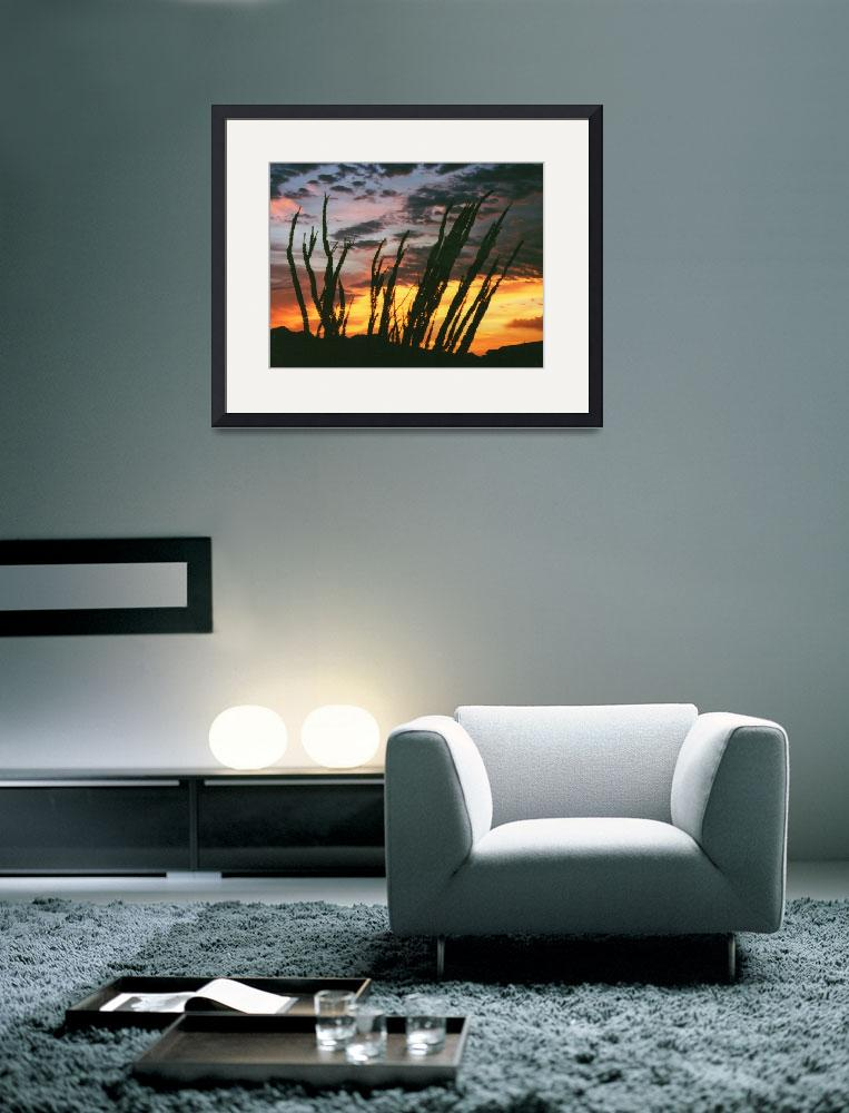 """""""Ocotillo Sunset&quot  by carlosartworks"""