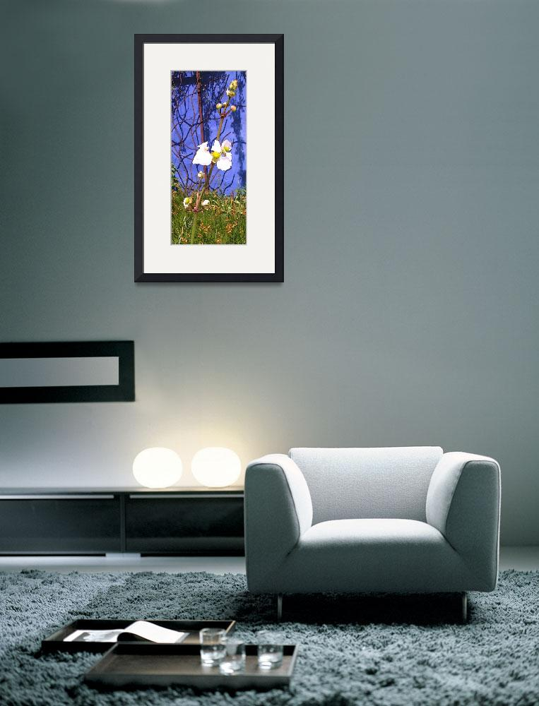 """""""Flower on Blue Wall&quot  by Kirby"""