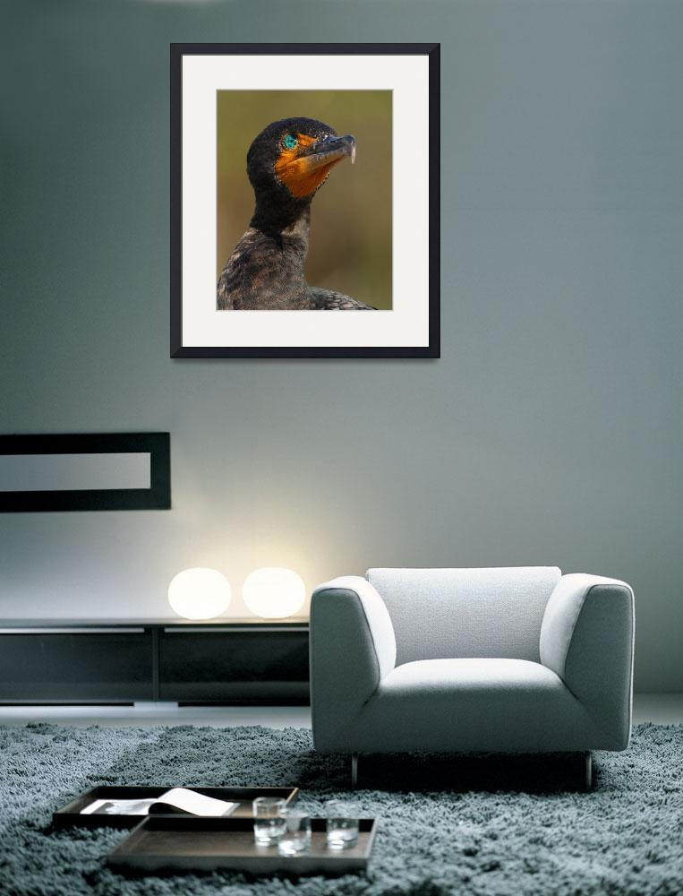 """Cormorant Attitude""  by WorldDesign"