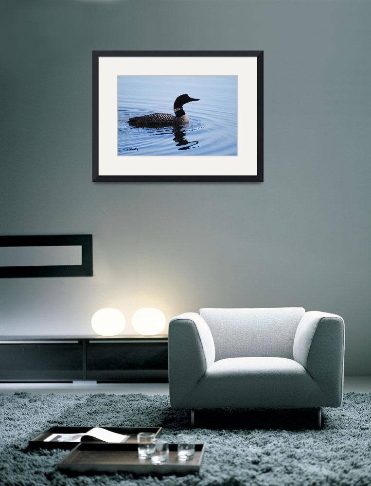 """""""Pacific loon (Gavia pacifica)&quot  (2015) by akstp"""