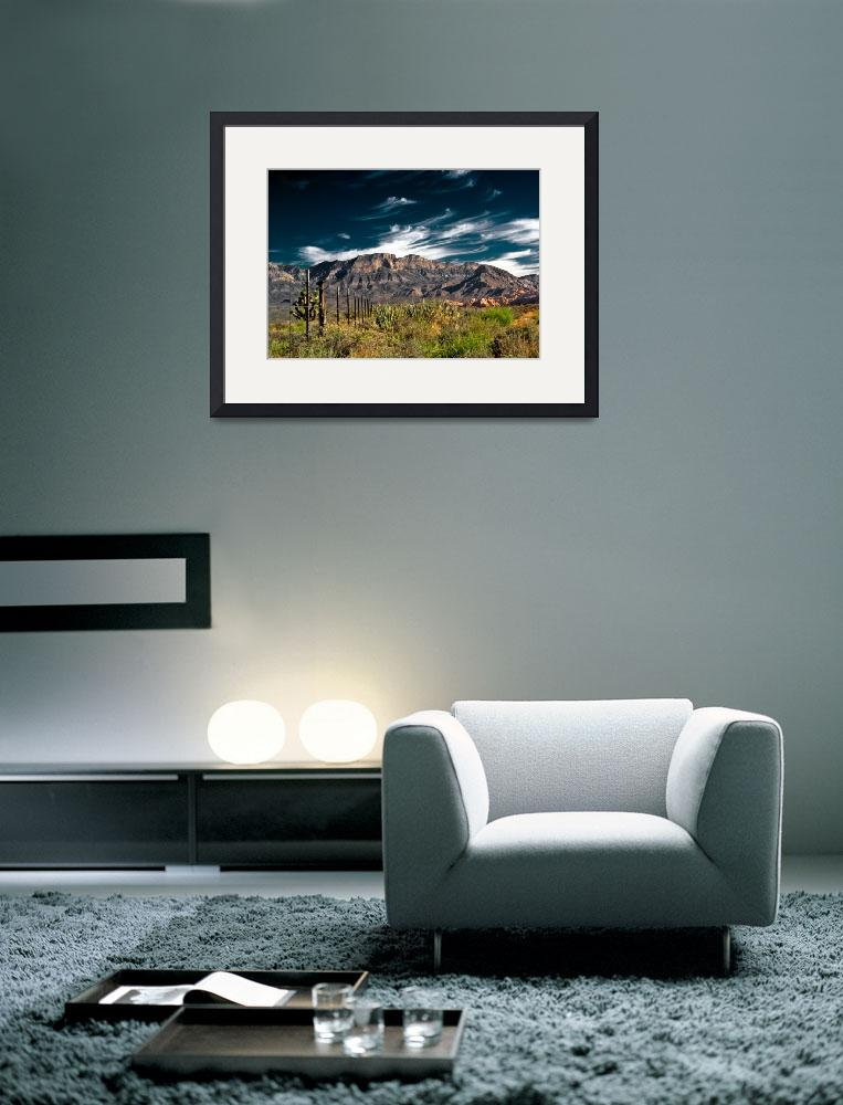 """""""Red Rock Nevada 1&quot  (2007) by OcularPerceptions"""