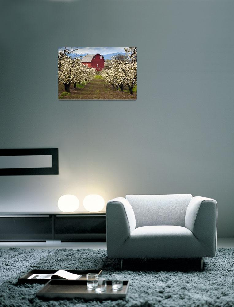 """Red Barn Spring""  (2010) by Dawsonimages"