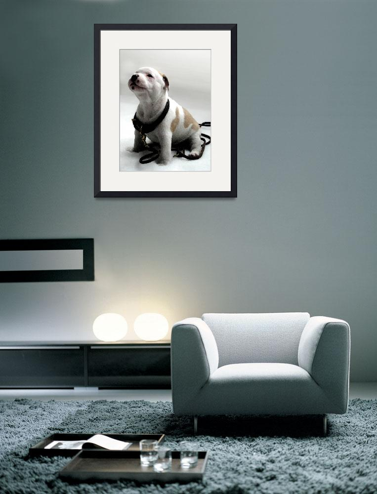 """""""Staffordshire Bull Terrier Puppy, Watercolor style&quot  (2008) by ModernArtPrints"""